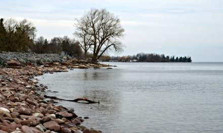 Why your facial scrub could be irritating Lake Ontario and a sweet solution