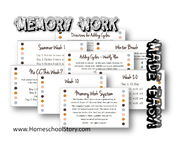 Memory Work System Cards