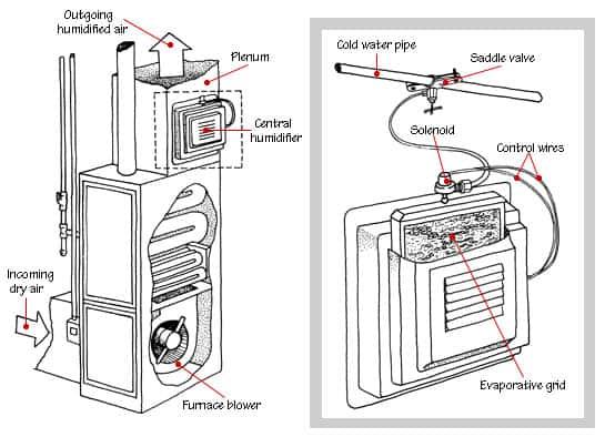 How Humidifiers Work