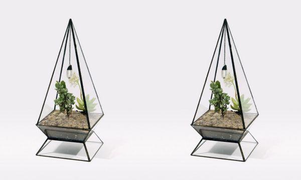 Sculptural planters