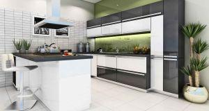 modular kitchen (4)