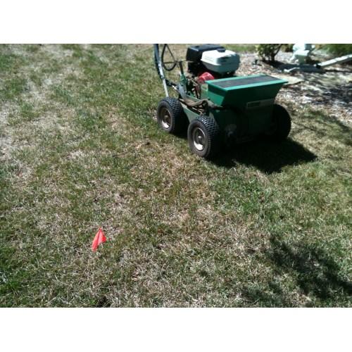 Medium Crop Of Gypsum For Lawns