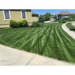 Small Crop Of Lesco Lawn Products