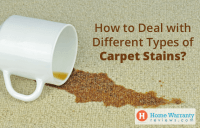 21 Cool Carpet Stain Removers & 3 DIY Stain Removal Sprays