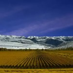 3 South American Wine Regions To Visit Before You Die