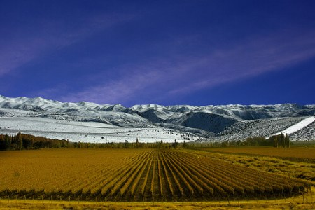 3 South American Wine Regions To Visit Before...