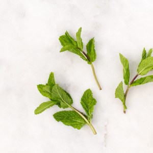 Curated Kitchen: Health Benefits of Mint, Spearmint, Peppermint