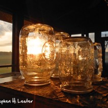 Mason jar feeders. Herb Lester Apiaries, Tennessee.