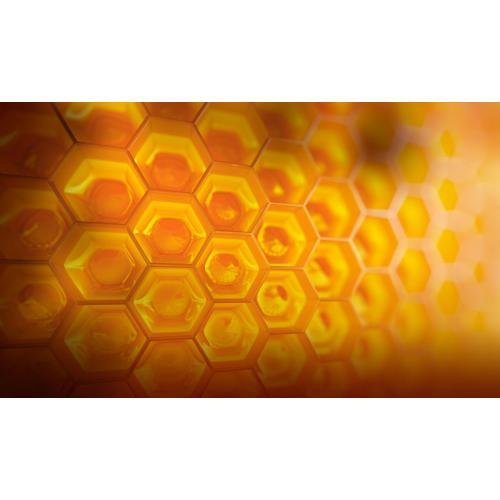 Medium Crop Of Honey House Naturals