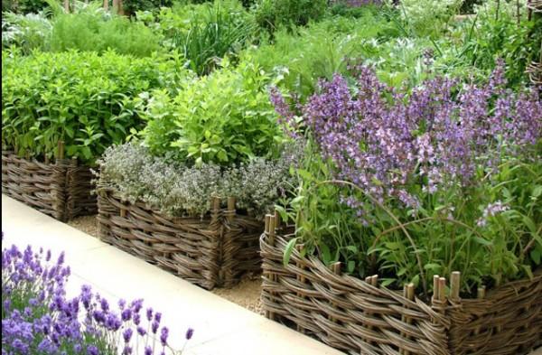 Permalink to Herb Garden Ideas