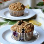 Oatmeal Blueberry Applesauce Muffins (151 Calories & LOW FAT)