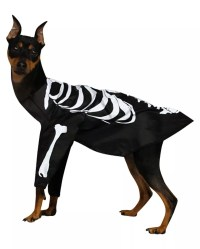 Skeleton Dog Costume Buy online for Halloween
