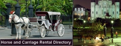 Horse Carriage Rentals in Marco Island Florida