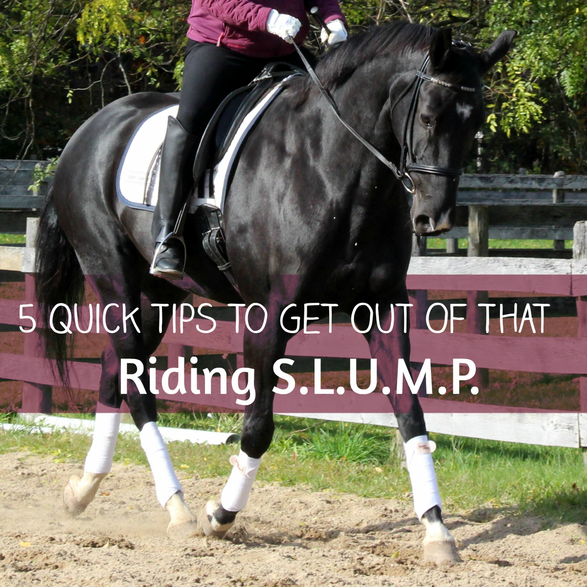5 QuickTips To Get Out Of That Riding S.L.U.M.P.