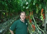 General Manager Of British Sugar S Hectare Greenhouse Operation