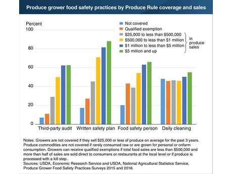 US Greater shares of larger produce growers use food safety practices