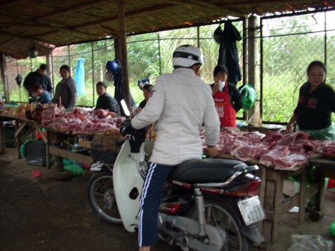 Halong Bay, Vietnam - Ha Long Bay
