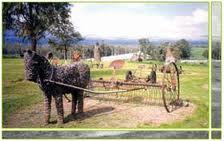 גן הפסלים של כפר סאלד