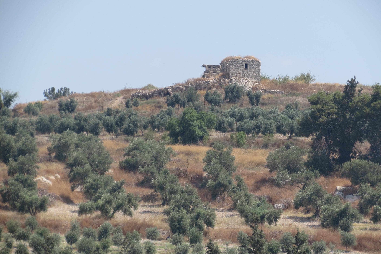 המבצר הצלבני