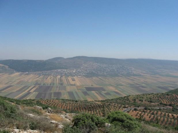 Beit Netofa valley from Hararit צילום:Ori~