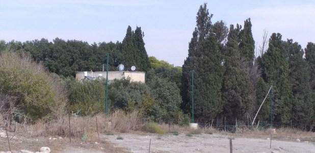 בית אלכסנדר זייד מכיוון הפסל