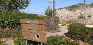 הפסלת  דליה מאירי