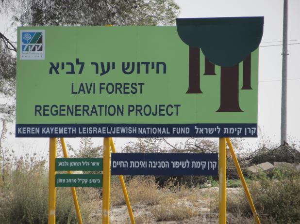 יער לביא- חידוש היער