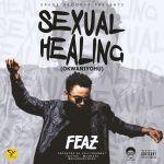 FEAZ SEXUAL HEALING ARTWORK