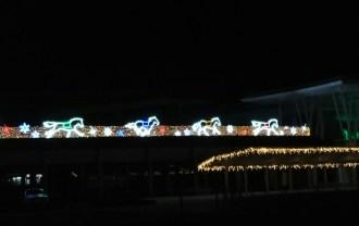 函館競馬場イルミネーション