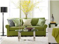 Living Room Design with Sofa Pillows
