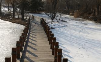 Winter Beijing - feature image
