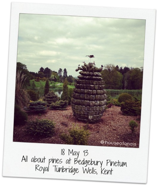 18 May Bedgebury