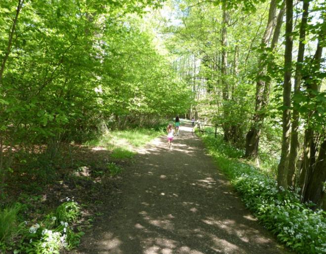 Groombridge Place Gardens_3