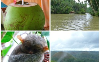 Bohol in a day Collage