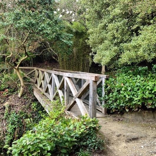 Magical bridge to your dream destination