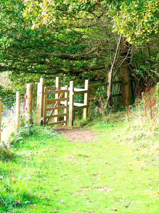 Nature walk in Ide Hill