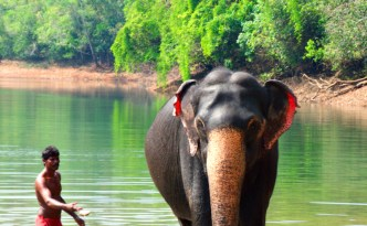Day 4 Kerala