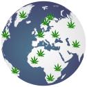 Global Weed