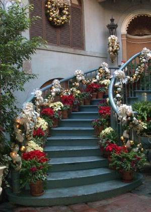 Christmas Decorations with Plants & Flowers