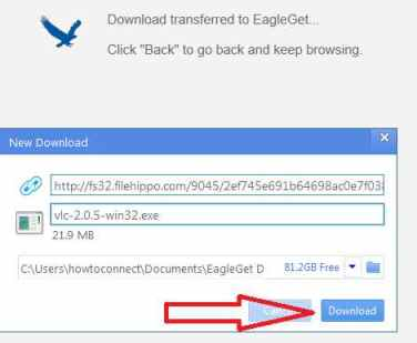 click download button on eagleget