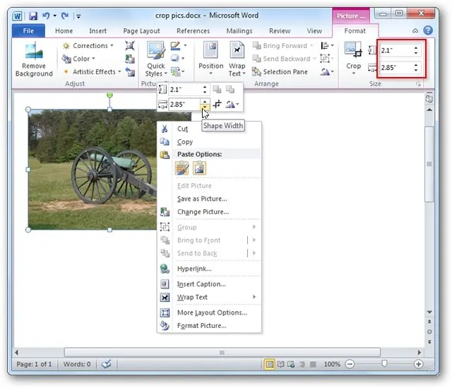 How to Crop Pictures in Word, Excel, and PowerPoint 2010 - on word