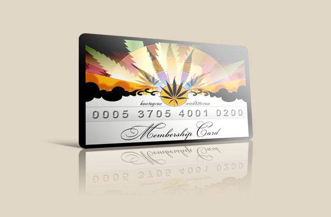 Thinking about Growing Your Own Medical Marijuana? - AngryBud - club card design