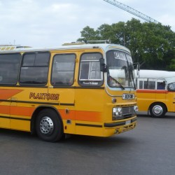 Old Maltese Yellow Bus