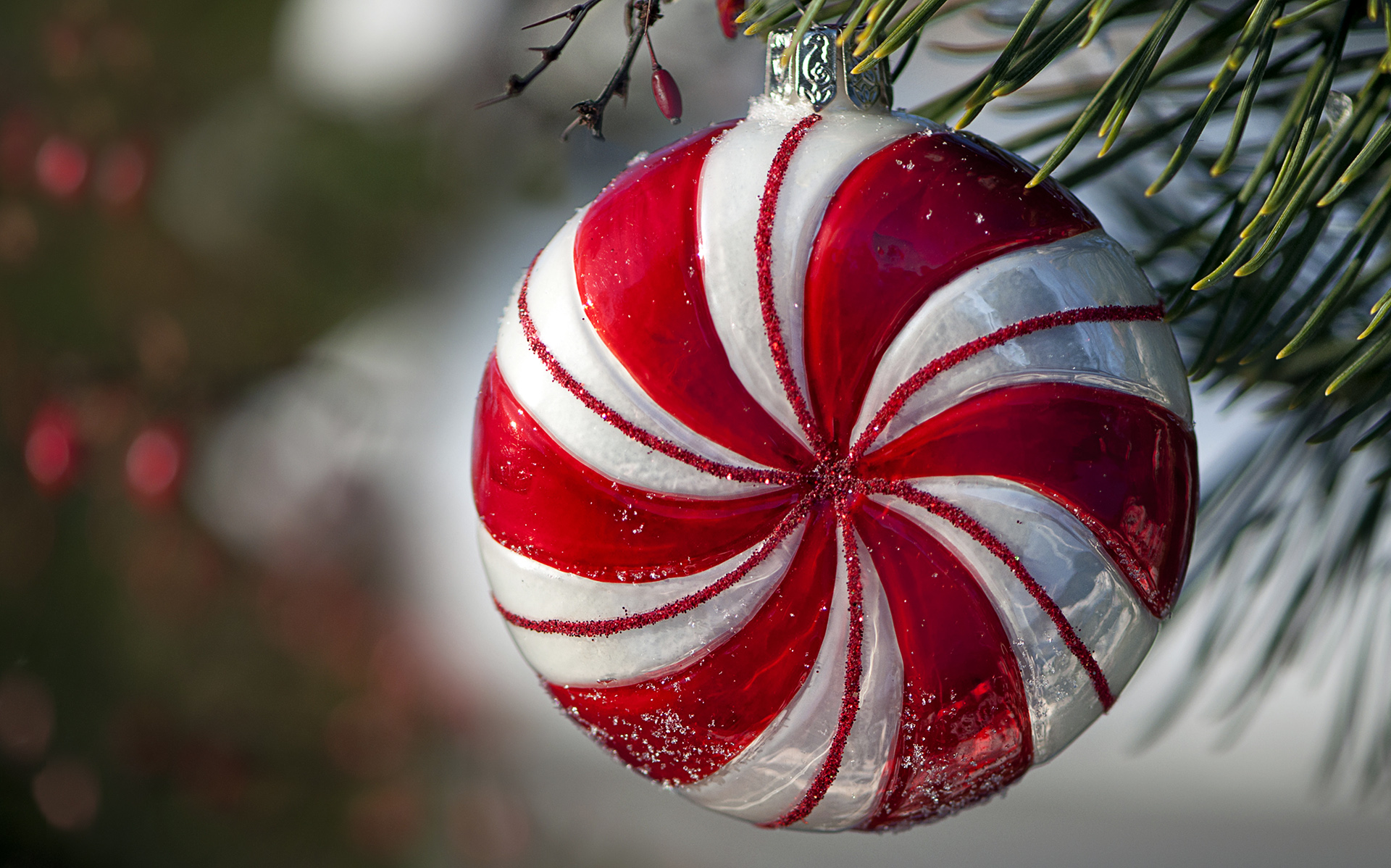 3d Wallpaper Decorating Ideas Peppermint Ornament Hanging In Pine Tree Hd Wallpapers