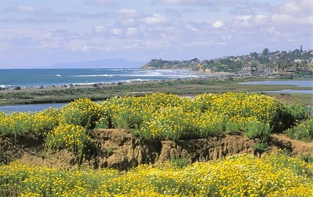 Cardiff California With Cardiff Real Estate  Homes For Sale