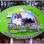Black Sheep Farm