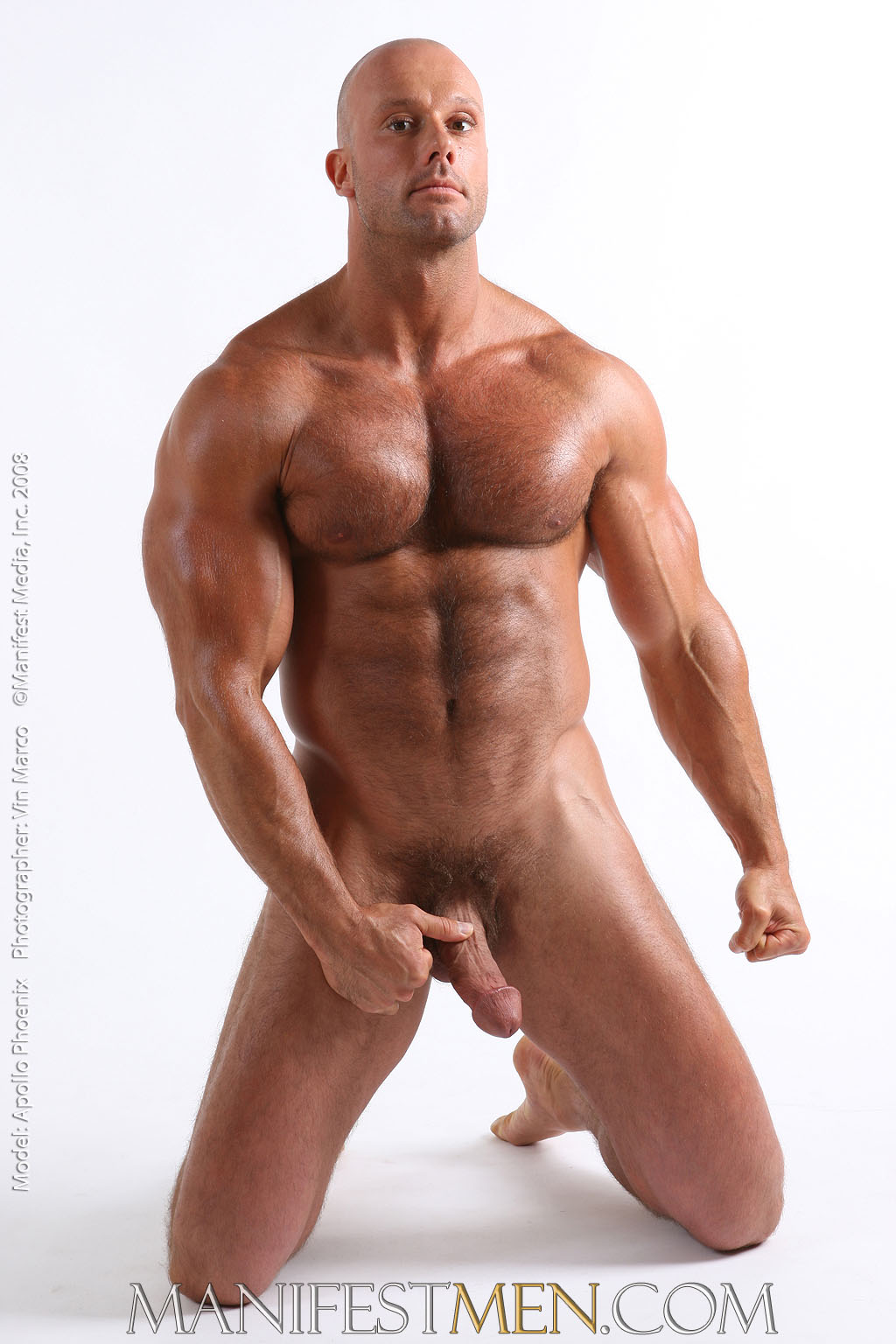 Magnificent words hairy bodybuilder gallery sorry, that