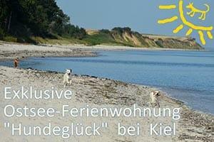 Ferienwohnung Hundeglück in Kiel