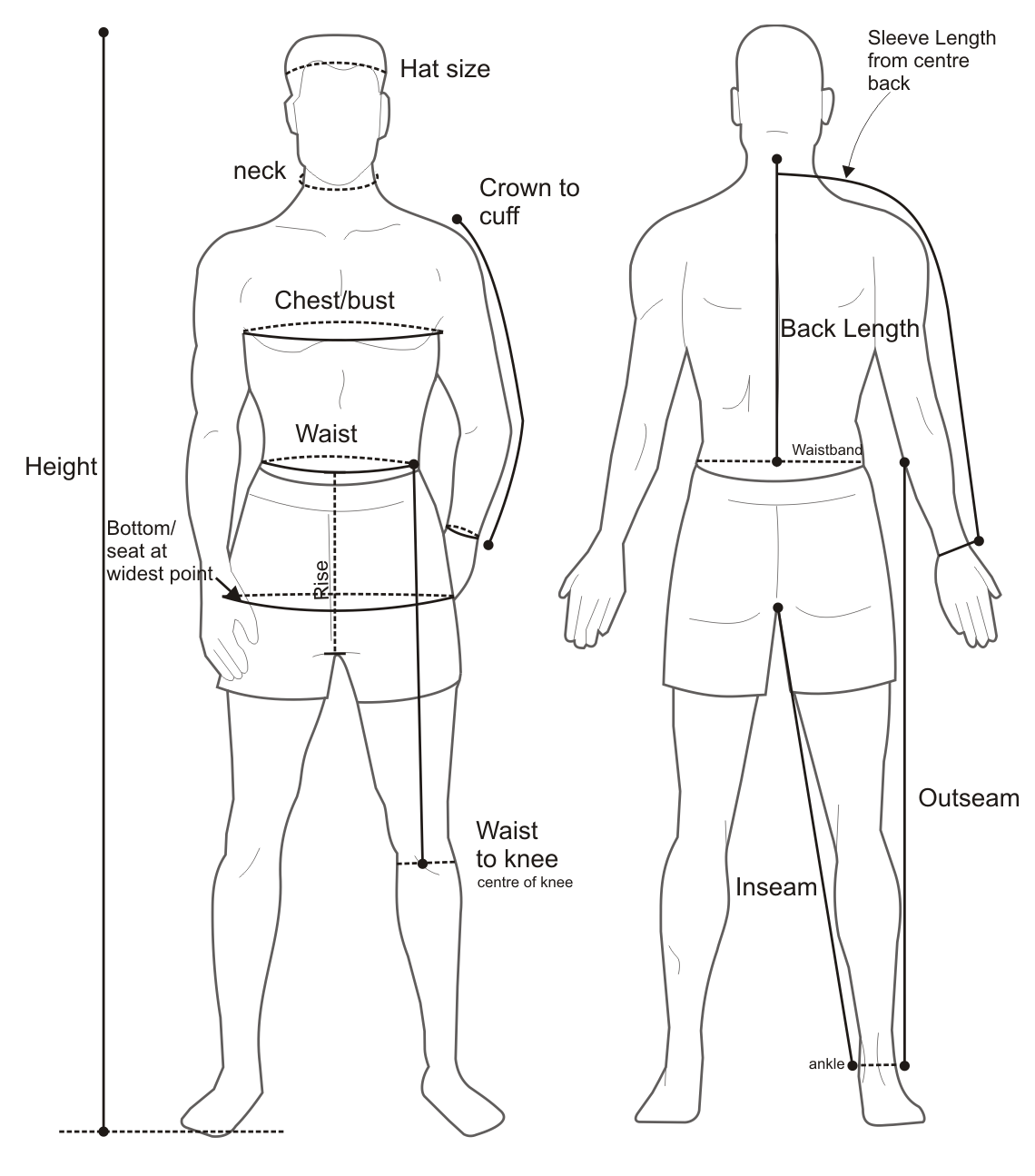 body diagram form