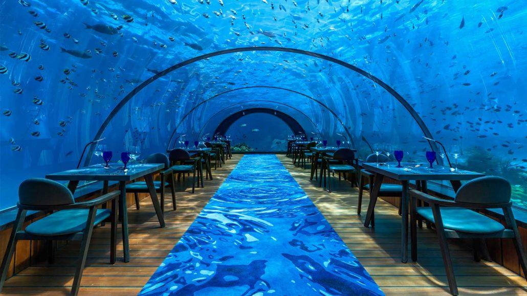 58 Undersea Restaurant Maldives Underwater Restaurant
